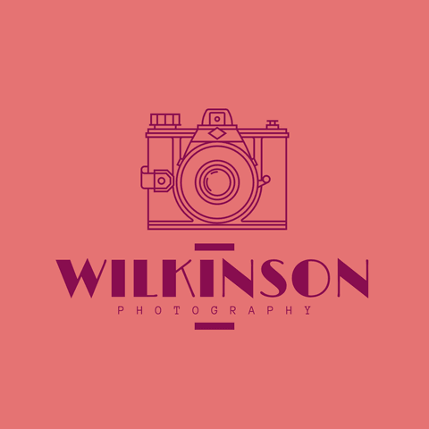 Logo Example for Photographers